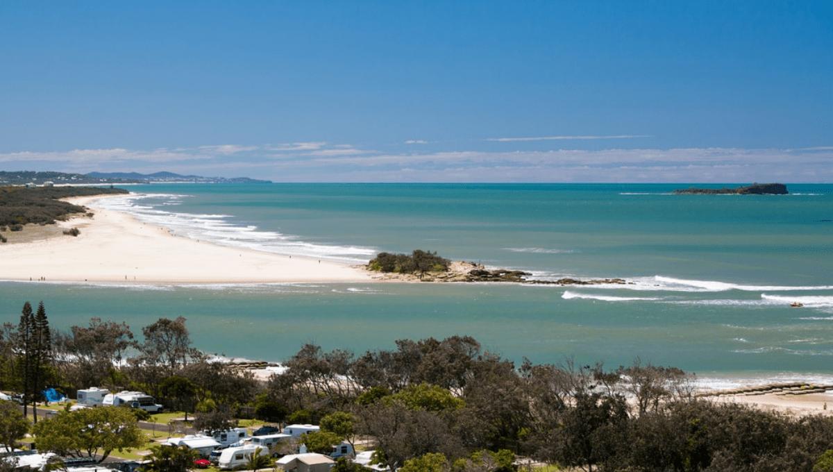 pet friendly accommodation sunshine coast